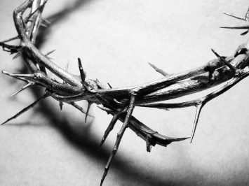 After the flogging of Jesus, the soldiers twisted a crown of thorns and placed it on his head almost as the  last step of humiliation since they mocked him saying he called himself a King. Jesus took this shame all for us. He died to live. What fruit am I bearing which testifies to his work in me?
